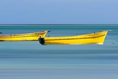 Les barques jaunes...