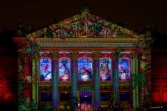 Son et lumière sur le Muséum de Nantes