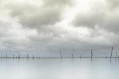 latence hivernale sur le bassin