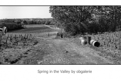 printemps dans la vallée
